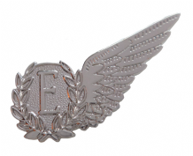 Air Engineer Royal Air Force RAF MOD Single Wing Nickel Pin Badge / Brevet